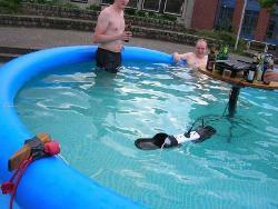 É só não fazer onda na piscina!